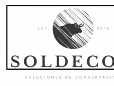 Soldecon