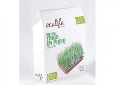 Harina de hierba de trigo en polvo de Ecolife Food